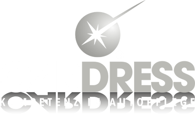 CAR DRESS Erlangen